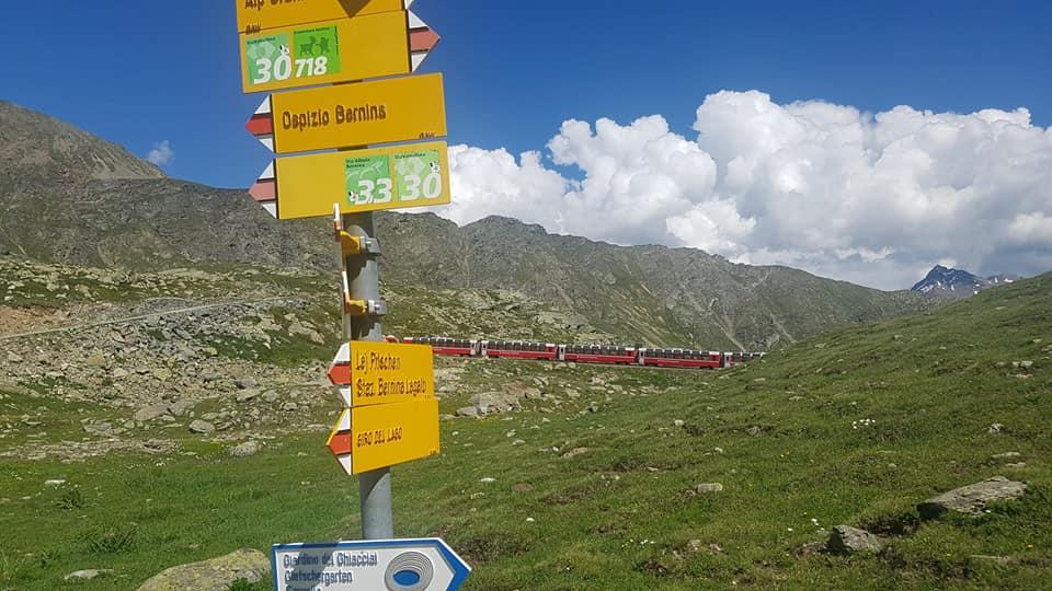 Trenino Rosso del Bernina e soft trek Passo Bernina-Alp Gruem 30 maggio 2021